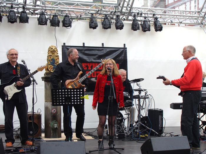 Tag der Niedersachsen 2010